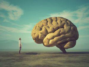 мозг и человек подсознание